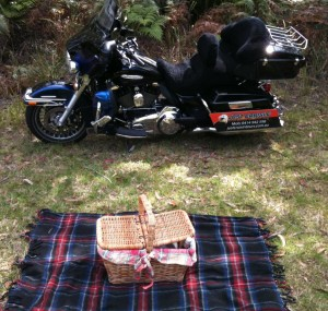 picnic basket and harleys. 008